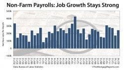 Non-Farm Payrolls: February jobs report shoes 242,000 new new jobs, 4.9% unemployment rate