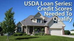 USDA Loan Series - Credit Scores