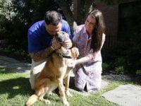 military dog reunites