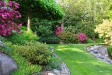 gardening and lawn care