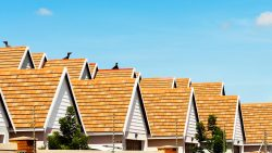 Fannie Mae vs. Freddie Mac: What's the difference?