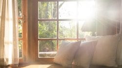 Sun shining into a cozy bay window with sheer curtains and throw pillows